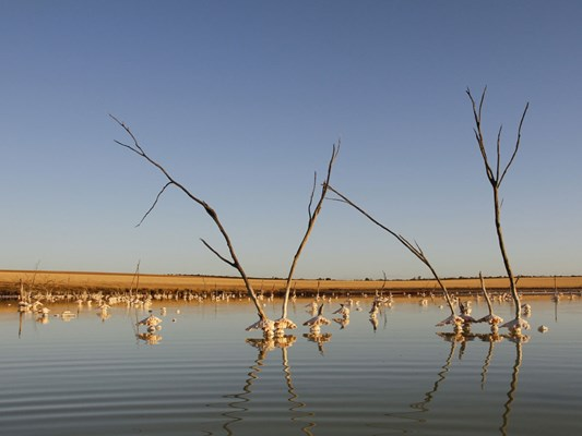 Quairading - Pink Lake by Keith Lightbody