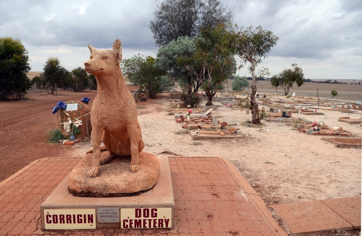 Corrigin Dog Cemetery